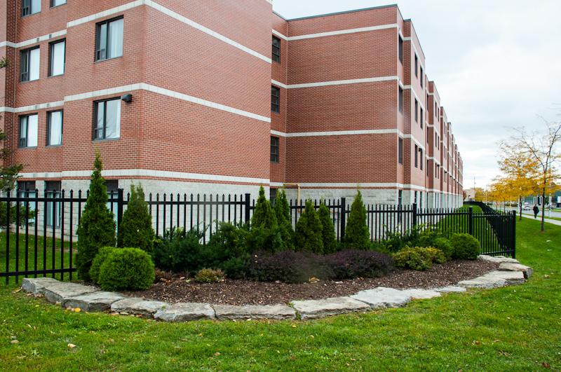 Commercial landscaping davis landscape design for Commercial landscape design