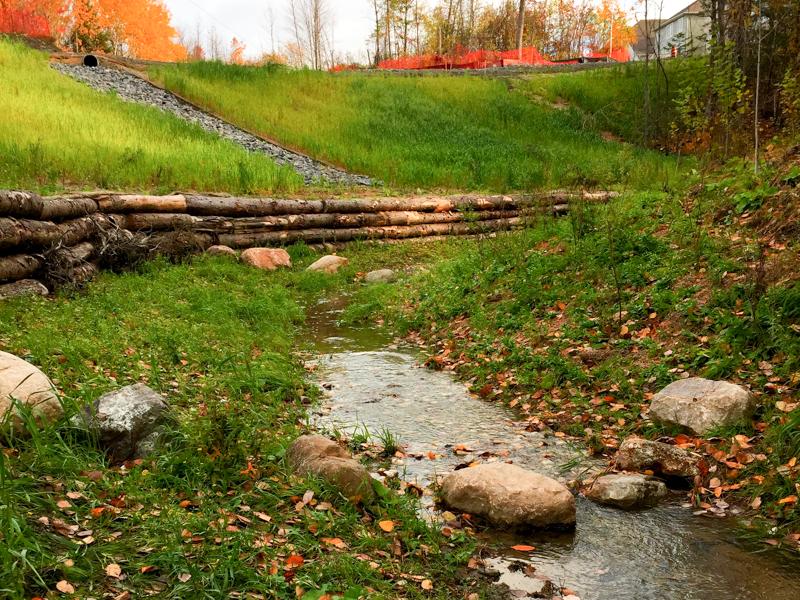 Wetland & Retention Ponds - Davis Landscape & Design